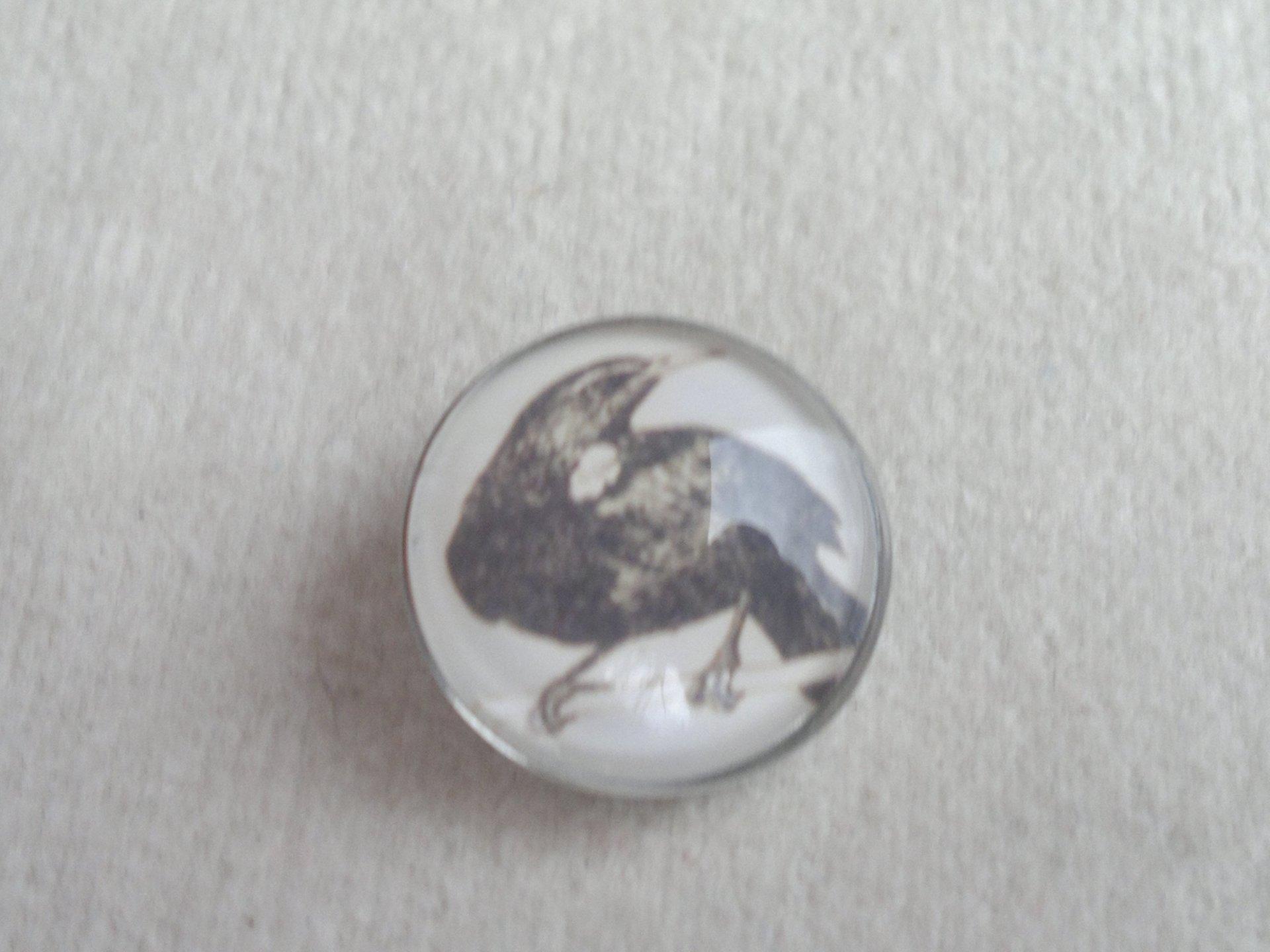 Kabocvok pr. 18 mm, pták - motiv 39